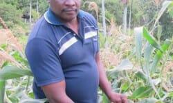 Millionnaire, il démissionne pour se consacrer… à l'agriculture