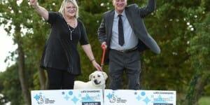 2 gains à l'Euromillions grâce à… leur Labrador !
